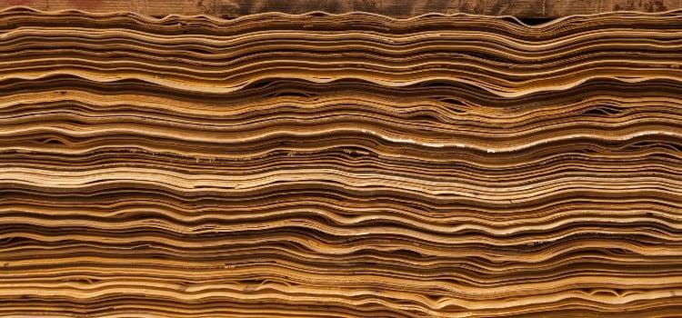 Baltic birch density