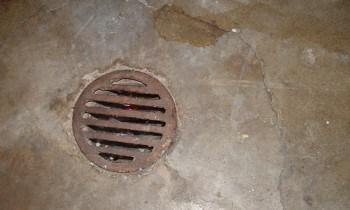 Cover Floor Drain