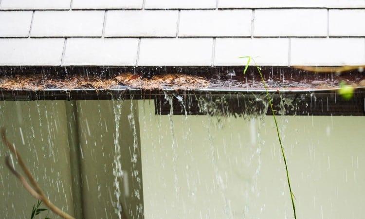 Water seepage in basement after rain